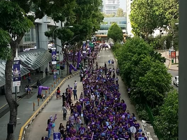 purple parade 1